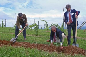 Ceremonial vine planting on Montalto