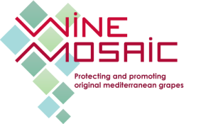 Wine_Mosaic_logo_The_Academic_Wino