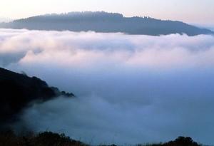 Photo By NPS Photo [Public domain], via Wikimedia Commons